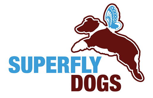 Superfly Dogs – Australian Shepherds in British Columbia